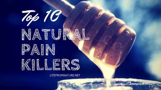 Top 10 Natural Pain killers Found in Every Home